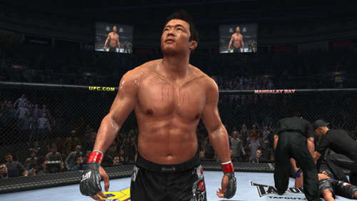 Screenshots aus UFC 2010