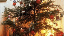Christbaum stand in Flammen