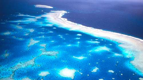 Tempolimit für Great Barrier Reef gefordert
