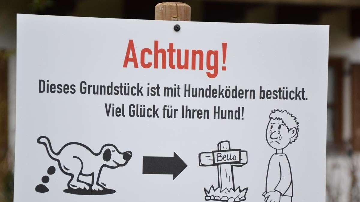 Hundehasser Stellt Makabere Schilder Auf Grundstück Region Chiemsee