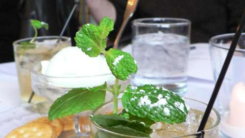 Der Mint Julep: Kentucky-Drink mit Whiskey