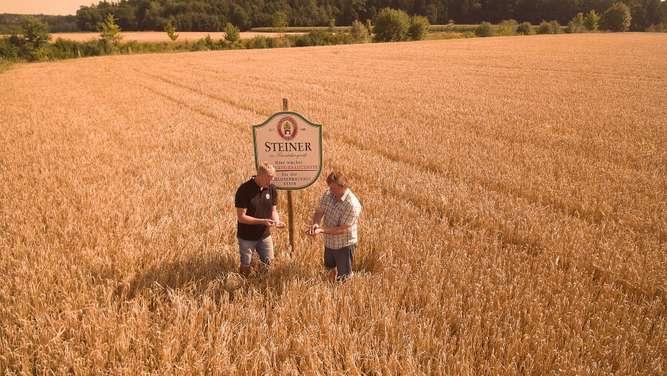 Der neue Imagefilm zeigt wo die Braugerste für das Steiner Bier wächst - nämlich mitten im Chiemgau.