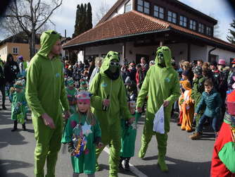Faschingsumzug in Waging (2)